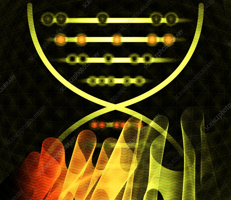 DNA computing, conceptual illustration