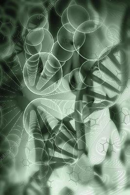 Genome editing, conceptual illustration
