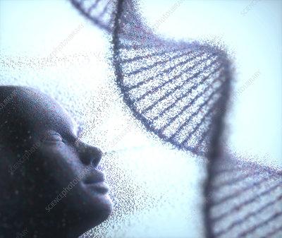 Human cloning, conceptual illustration