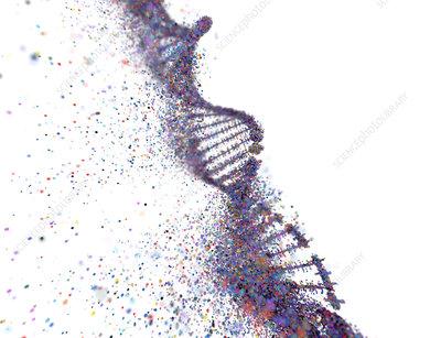 DNA damage, conceptual illustration