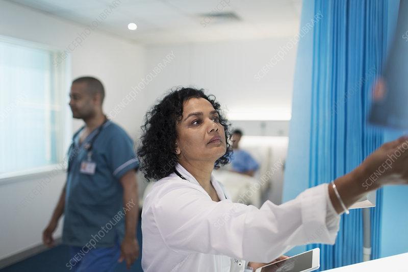 Focused female doctor working in hospital room