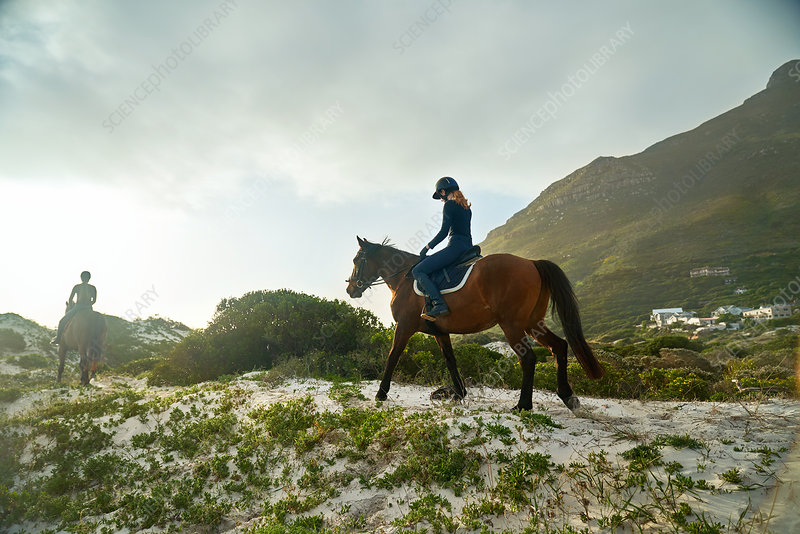 Young woman horseback riding on sunny tranquil beach