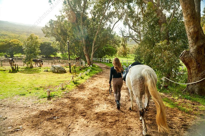 Woman leading horse toward sunny rural paddock
