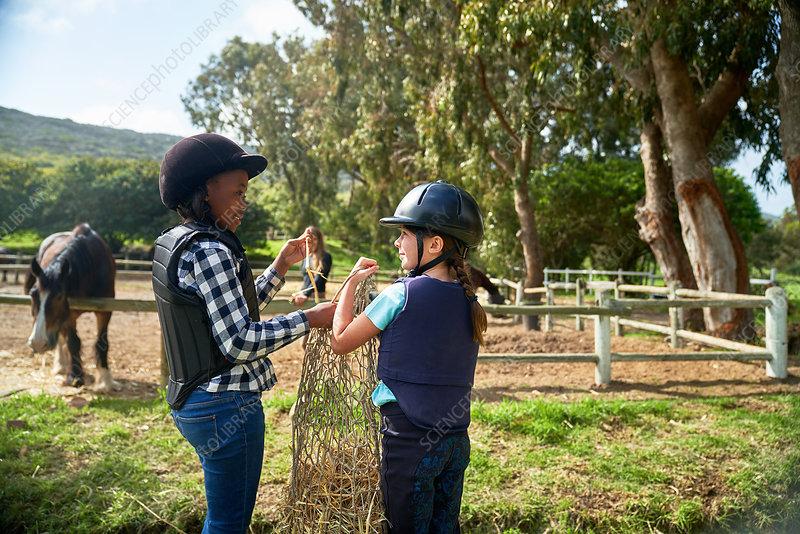 Happy girls carrying hay toward horses in paddock