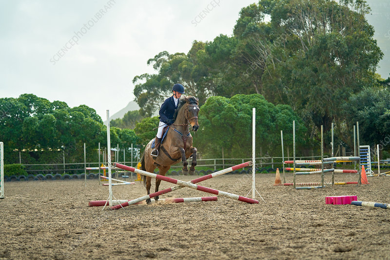 Teenage girl equestrian jumping in paddock