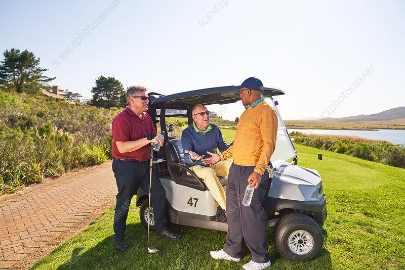 Male golfer friends talking at sunny golf cart