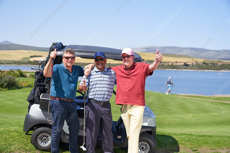 Mature male golfers at golf cart on sunny course