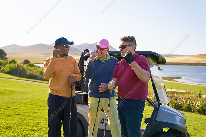 Male golfers cheering at sunny golf cart