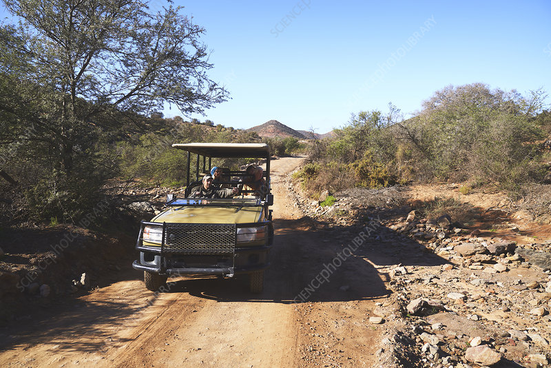 Group riding in off-road vehicle on sunny dirt road