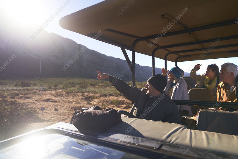 Safari tour guide and group in sunny off-road vehicle