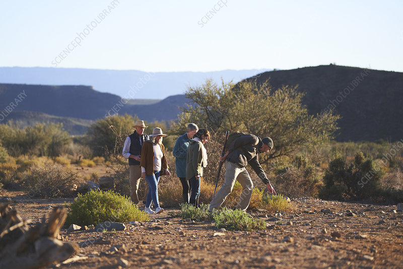 Safari tour guide explaining plants to group South Africa