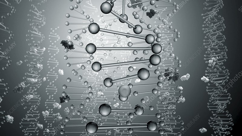 DNA and proteins, illustration