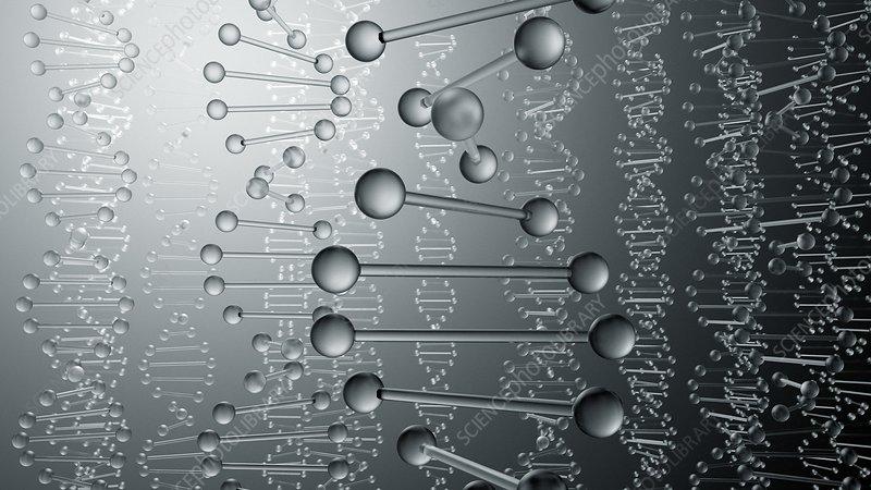 DNA molecules, illustration