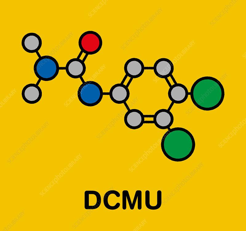 Diuron herbicide molecule, illustration