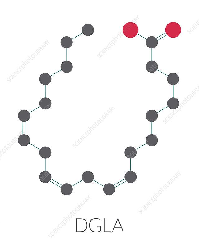 DGLA fatty acid molecule, illustration