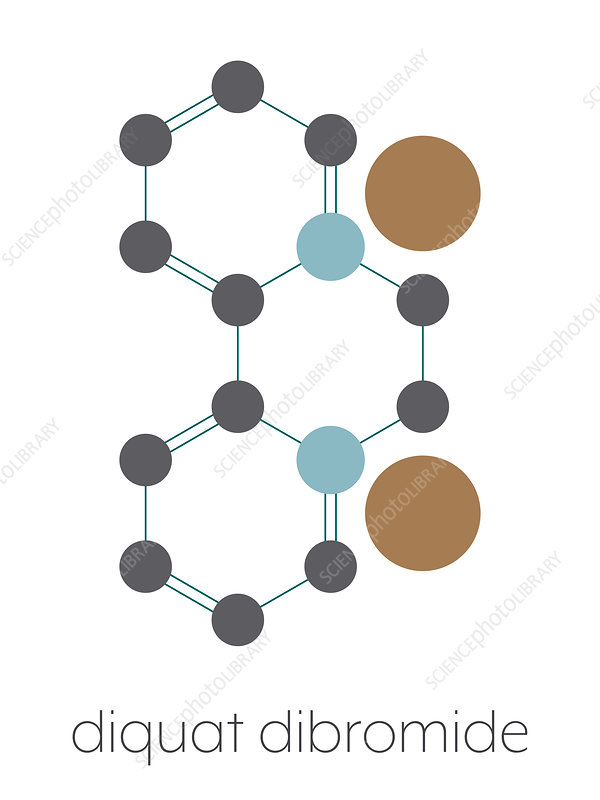 Diquat dibromide contact herbicide molecule, illustration