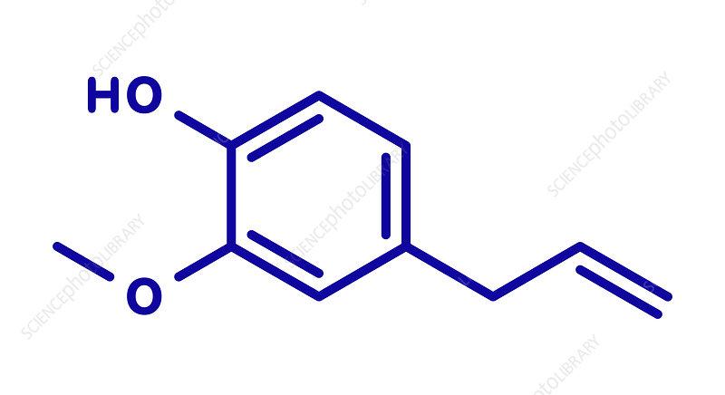 Eugenol herbal essential oil molecule, illustration