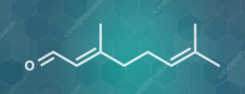 Geranial lemon fragrance molecule, illustration