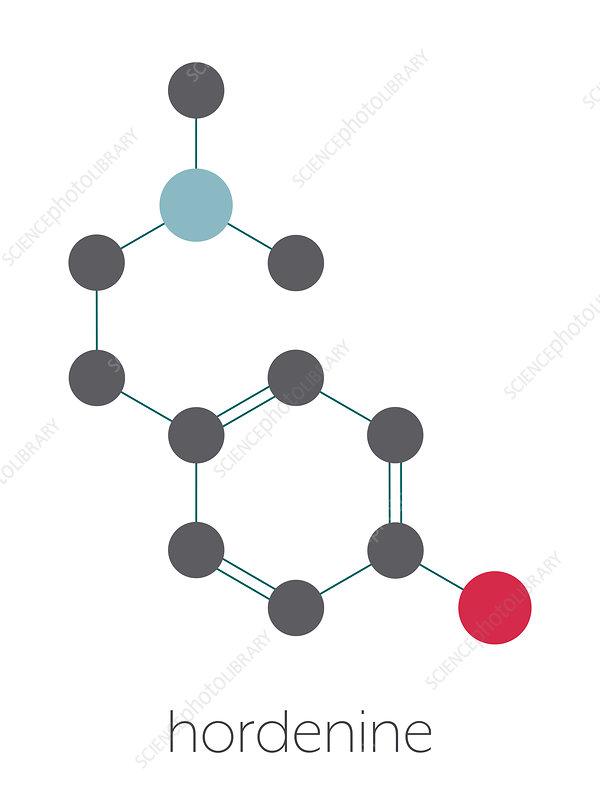 Hordenine stimulant molecule, illustration