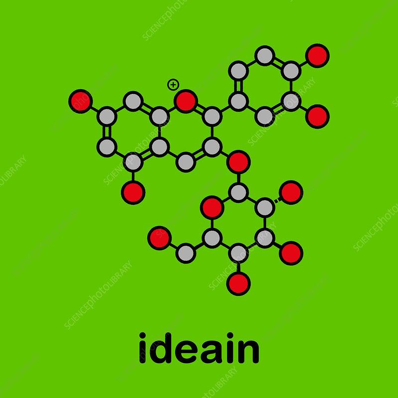 Ideain plant pigment molecule, illustration