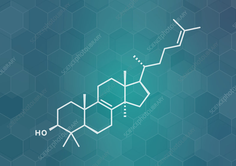 Lanosterol molecule, illustration