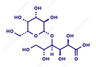 Galactose Molecule