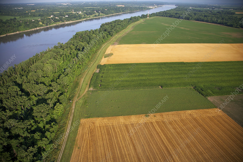 Levee and Farmlands