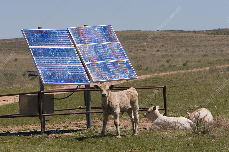 Solar Panels on a Kansas Ranch