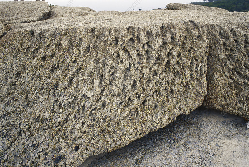 Wind-eroded Granite