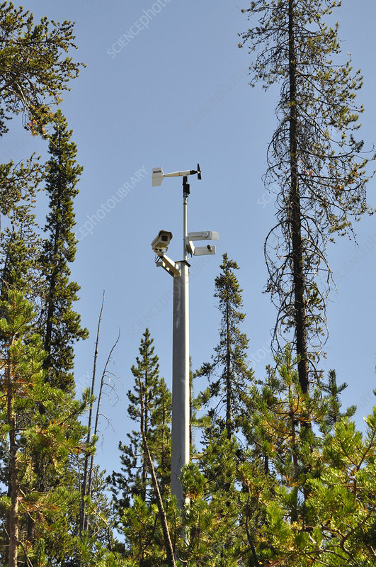 Road Camera and Weather Station