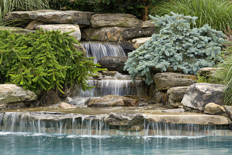 Pool, waterfall and conifers