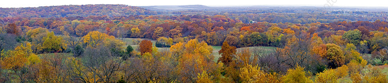 Autumn Panoramic Scenic