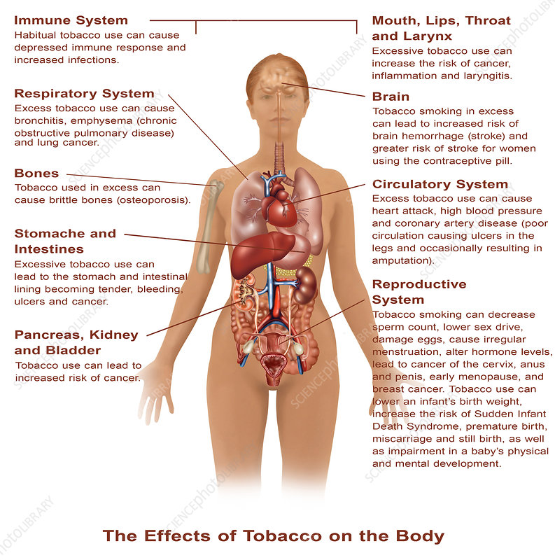 Effects of Tobacco Use