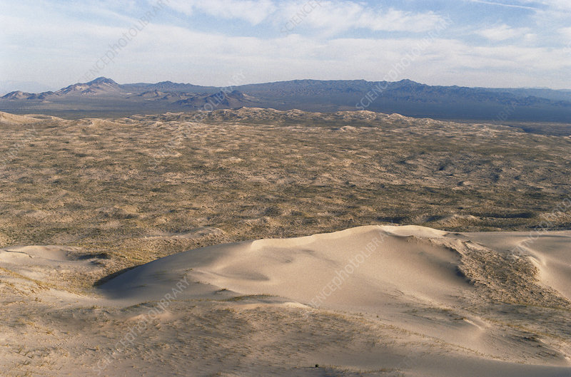 Kelso Dunes, California
