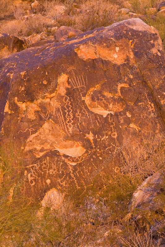 Petroglyphs by the Hohokam Indians