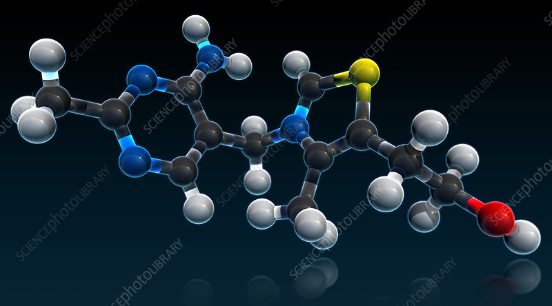 Vitamin B1, Molecular Model, illustration