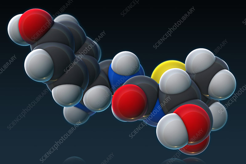 Amoxicillin Molecular Model, illustration