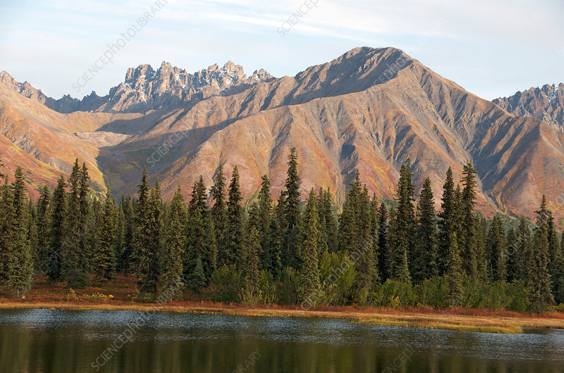 Alaska Range Mountains at Colorado Lake