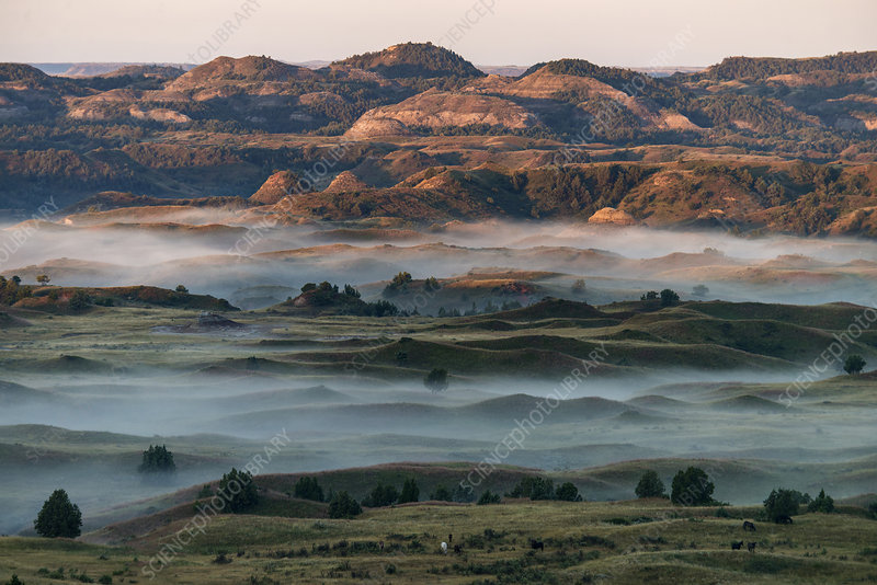 Theodore Roosevelt National Park, USA