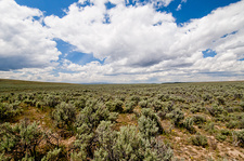 The sagebrush sea, USA