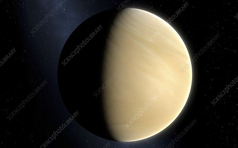 Artwork of Venus