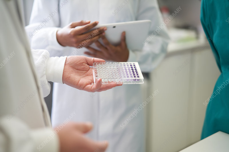 Scientists with digital tablet and specimen tray