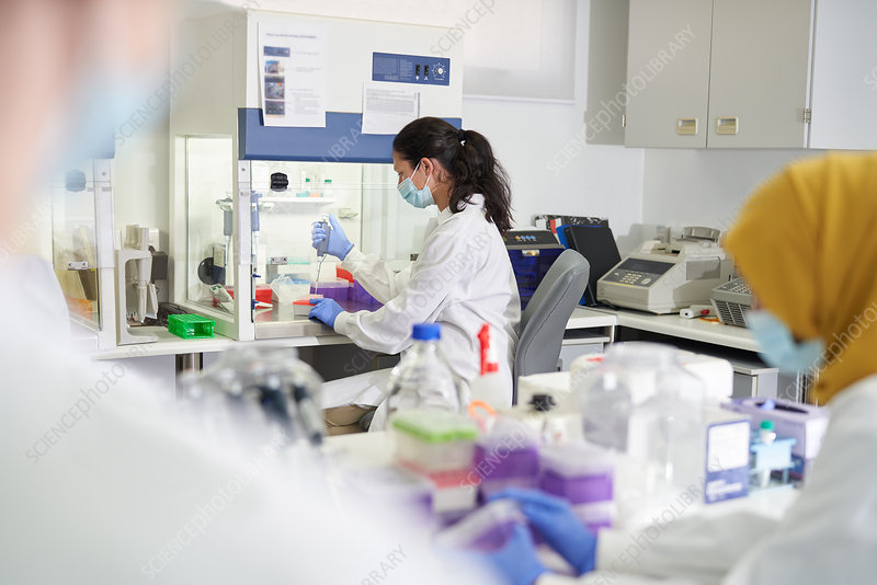 Scientist in face mask and gloves working
