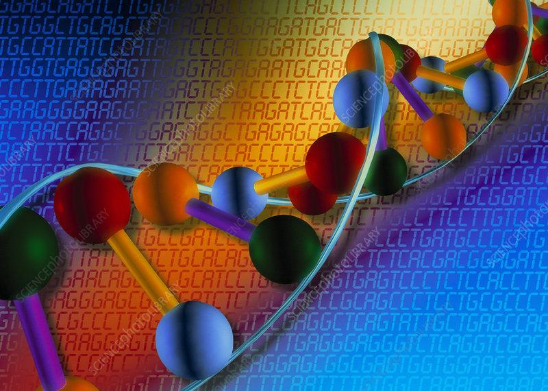 Artwork of DNA