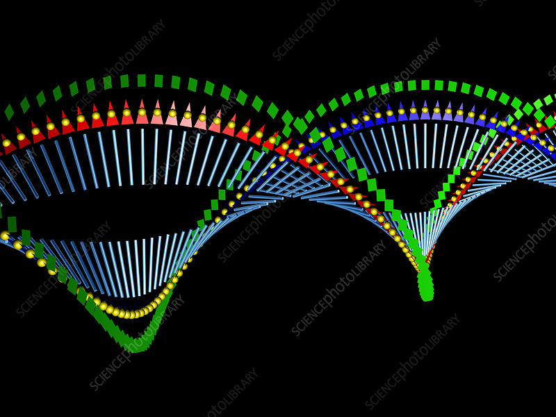 DNA molecule, abstract image