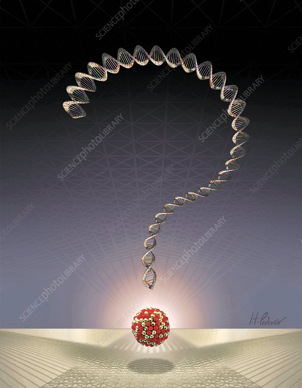 DNA question mark