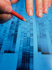 Examining DNA sequence