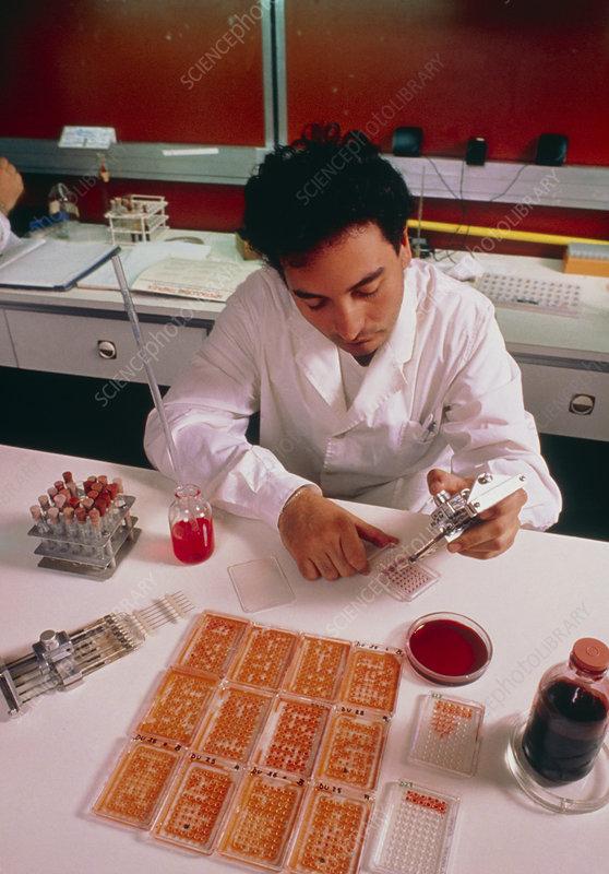 DNA fingerprinting in Argentina