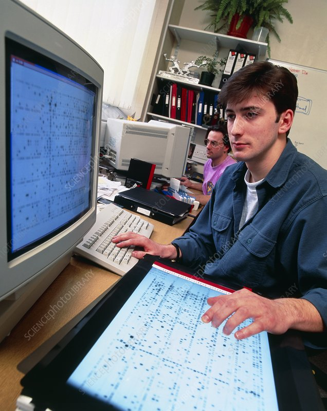 Genome researcher working with computer