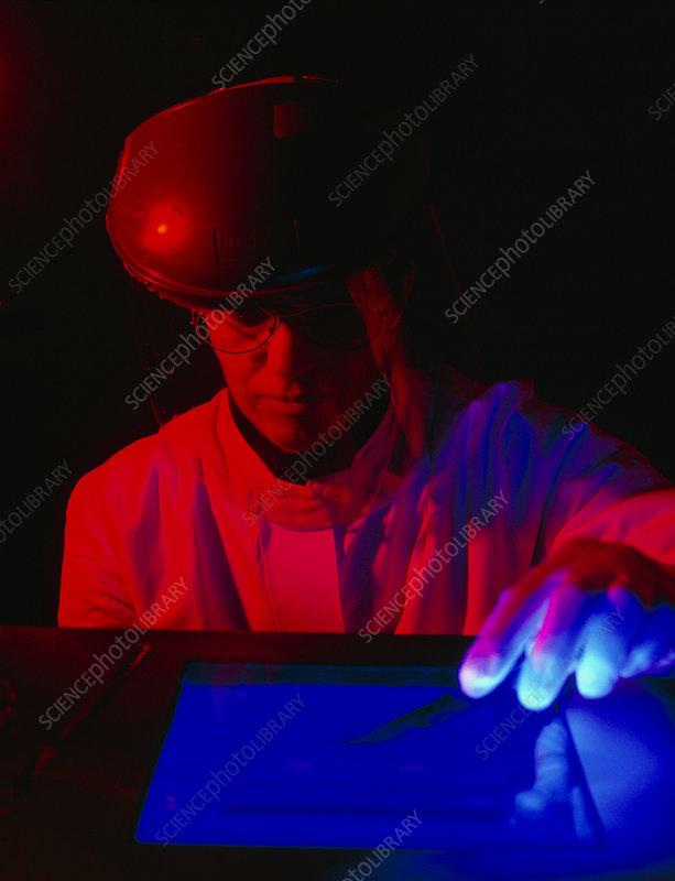 how to use agar agar sheets